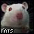 Rats: