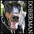 Doberman: