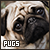 Pugs: